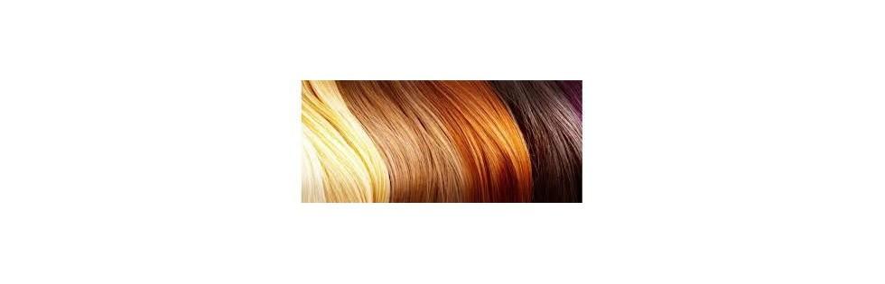 coloration - Elcea Coloration